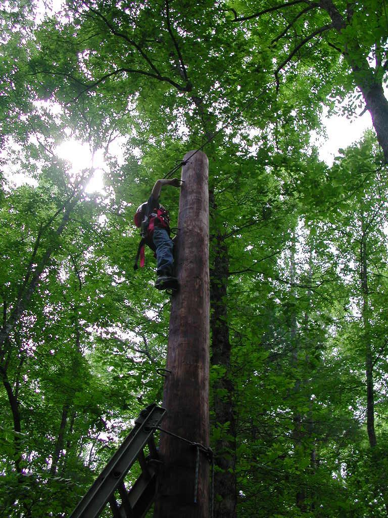 climbing-the-pole