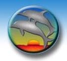 cropped-dolphins1.jpg