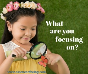 What are you focusing on- (3)