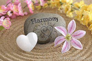 zen-garden-harmony-14169814